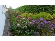 zahrada Čtyřkoly